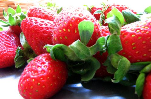 amor fresa lyrics. amor fresa. saben de nuevo a fresa; saben de nuevo a fresa. p0intblank. Sep 12, 02:29 PM